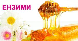 ПЧЕЛЕН МЕД естествена хранителна добавка с ензими