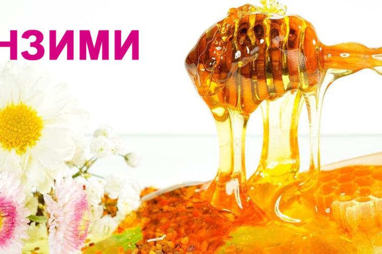 Пчелният мед е естествена хранителна добавка с ензими