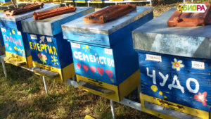 Натурален-пчелен-мед-от-производител.-Био-пчелна-ферма-БИОРА.Билков-акация-липов-липа-кориандър, natural honey, bee farm Biora, Bulgaria, Bee gard Biora, honning, honig, Honigbienenfarm Biora, Bulgarien honig