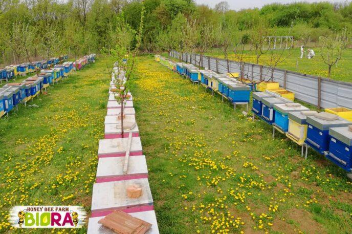 Акациев мед – 720г, 4бр, РЕКОЛТА 2021